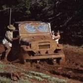 1989 Ficha do wrangler do jipe