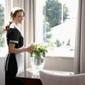 A senhora de limpeza como um empregado vs. Um contratante independente
