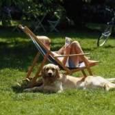 Turf dog-resistentes