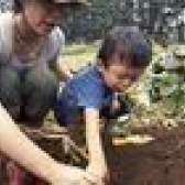 Como romper torrões de terra sem um leme