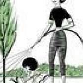 Como ajudar uma árvore que está overwatered