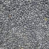 Como instalar o cascalho paisagismo rocha