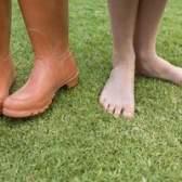 Como matar as ervas daninhas na grama com remédios caseiros