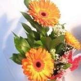 Como preservar flores em pesos de papel de vidro