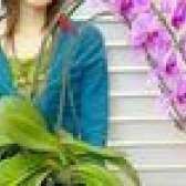 Como aparar uma haste orquídea mortos