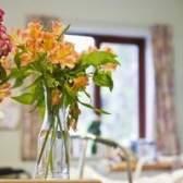 Qual é o tempo de vida de flores de corte?
