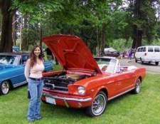 1984 Especificações 5.8l ford