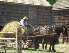 Ferramentas agrícolas amish