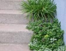 DIY: como paisagem passos ao ar livre e escadas