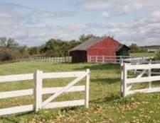 Ideias agrícolas