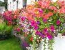 Como anexar floreiras sem fazer buracos