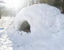 Como construir um forte de neve do telhado
