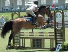 Como construir padrões de cavalo salta