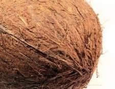 Como limpar tapetes de coco