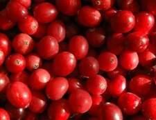 Como para diluir o suco de cranberry sem açúcar e água para desintoxicação