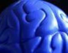 Como memorizar partes do cérebro