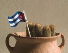 Como encontrar parentes cubanos em Cuba
