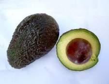 Como crescer o abacate na Geórgia