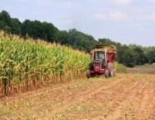Como melhorar a produtividade agrícola
