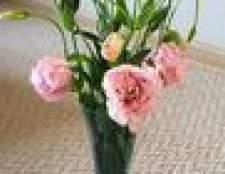 Como manter as flores frescas em um vaso