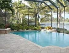 Como paisagem ao redor de uma piscina na Flórida
