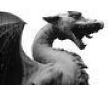 Como aprender dragão do estilo de kung fu movimentos