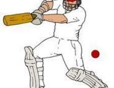 Como fazer um bolo de bastão de cricket