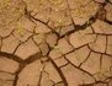 Como fazer o solo de argila escorrer bem
