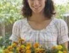 Como plantar um canteiro de flores em uma inclinação
