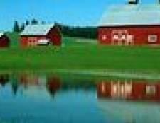 Como ligar uma lagoa fazenda vazamento