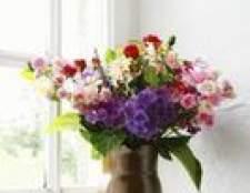 Como preservar arranjos de flores