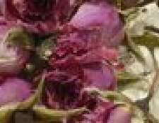 Como preservar flores com pulverizador