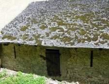 Como remover o musgo em um telhado da agitação do cedro