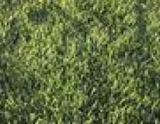 Como definir um espalhador construtor turf scotts