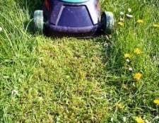 Como iniciar um serviço de cuidado do gramado sem dinheiro