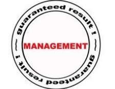 Importância da gestão