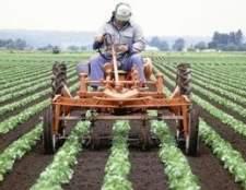 Problemas enfrentados pelos agricultores
