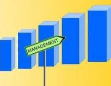 Estrutura de gestão de pequenas empresas