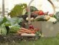 Ao plantar um jardim em east tennessee